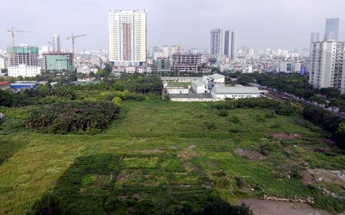 Hơn 80.000 ha đất vi phạm chưa được thu hồi