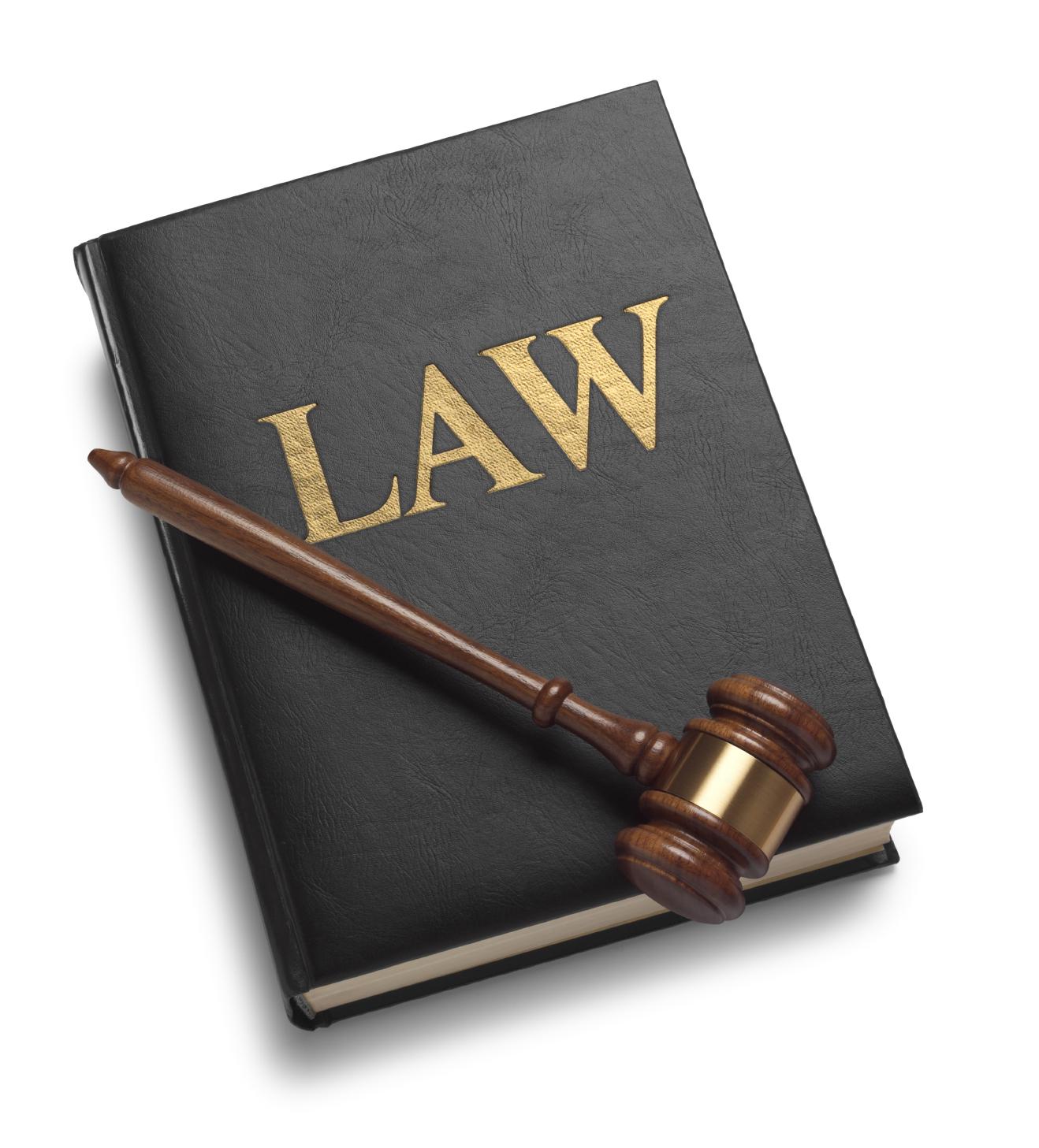 29/06/2010 Luật số 53/2010/QH12 - Luật thi hành án hình sự